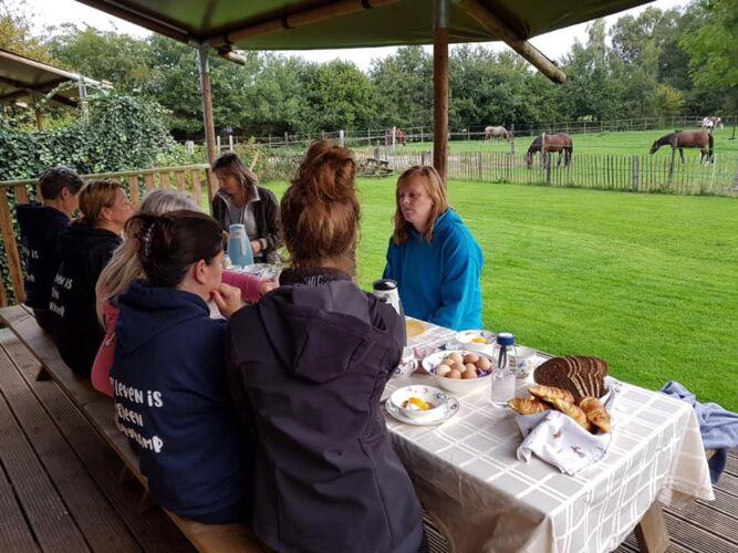 Ontbijt bij de paarden